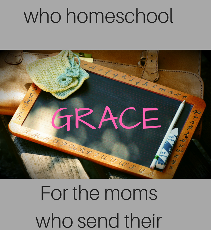 Grace for the mom who chooses to homeschool or public school her children.