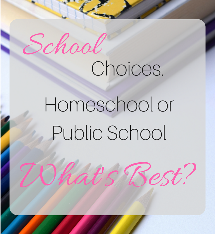 School choices. Should we homeschool or public school?