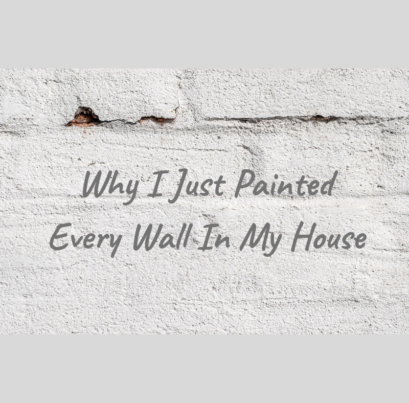 why I painted every wall moving
